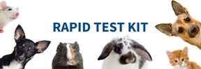 Veterinary Rapid Test Market Study by Cattle, Swine, Poultry and Livestock Animals – Projected to Grow at 8.3% CAGR and to Reach US$ 854 Million by 2024