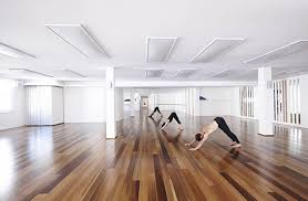 Yoga Studio System Market Global Industry Analysis, Size, Share, Growth, Trends and Forecast 2019-2025