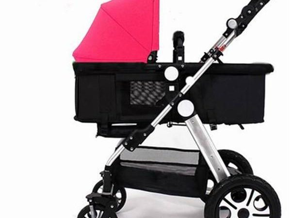 Baby Buggies Market Global Industry Analysis, Size, Share, Growth, Trends and Forecast 2019-2025