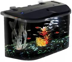Home Aquarium Filter  Market in Global Industry : Demands, Insights, Research and Forecast 2019-2025